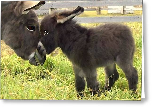 Baby Jackass Greeting Cards - The New Arrival Greeting Card by Shere Crossman