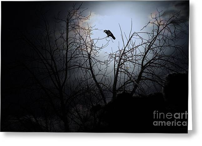 Fantasy Creature Photographs Greeting Cards - The Night The Raven Appeared In My Dream . 7D12631 Greeting Card by Wingsdomain Art and Photography