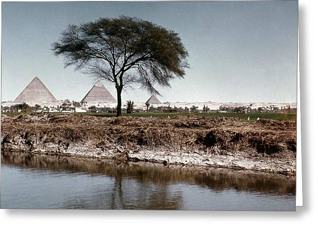 4th Greeting Cards - The Nile & Pyramids At Giza Greeting Card by Granger