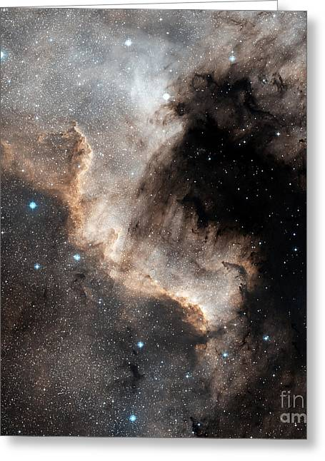 Interstellar Space Greeting Cards - The North America Nebula Greeting Card by Charles Shahar