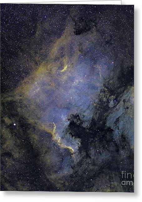 Starforming Greeting Cards - The North America Nebula Greeting Card by Phillip Jones