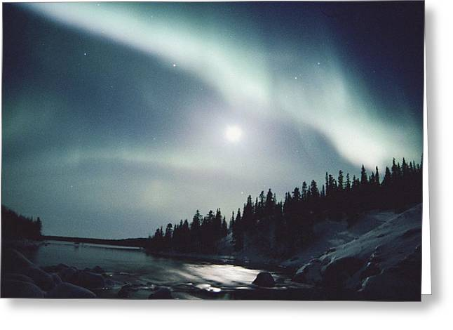 Northwest Territories Greeting Cards - The Northern Lights Light Up The Sky Greeting Card by Paul Nicklen