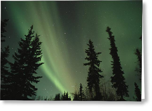 Scenes And Views Photographs Greeting Cards - The northern lights Greeting Card by Maria Stenzel