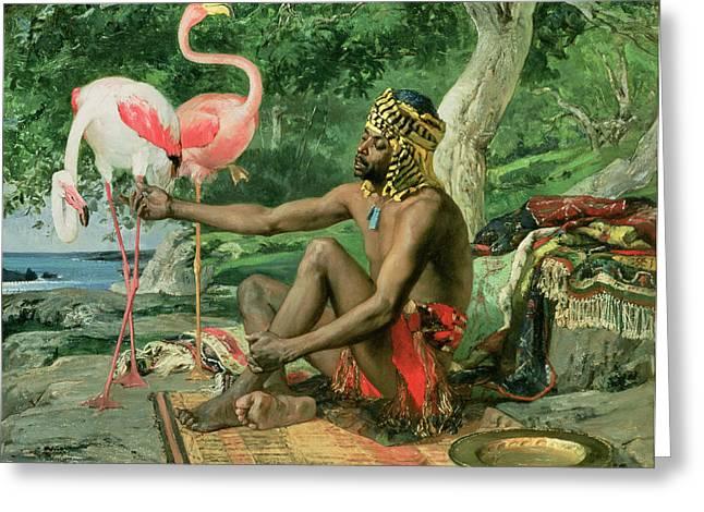 Feeding Greeting Cards - The Nubian Greeting Card by Georgio Marcelli