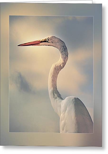 Observer Greeting Cards - The Observer Greeting Card by Stephen Warren