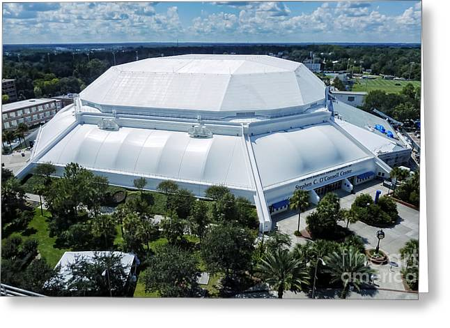 Florida Gators Greeting Cards - The ODome Greeting Card by Joan Carroll
