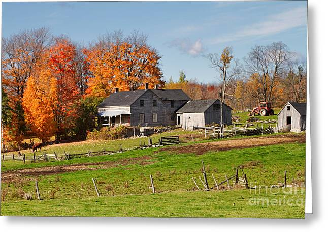 Outbuildings Greeting Cards - The Old Farm in Autumn Greeting Card by Louise Heusinkveld