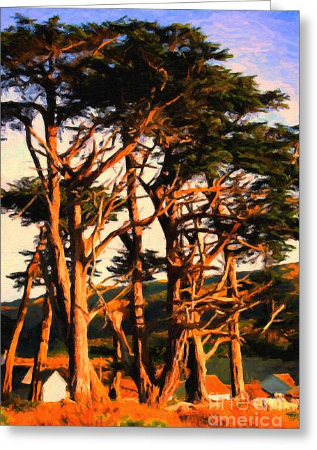 Backroad Digital Art Greeting Cards - The Old Grove At The Ranch At Sunset . 40D4531 . Painterly Greeting Card by Wingsdomain Art and Photography