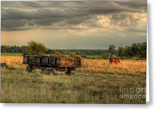 The Old Hay Wagon Greeting Card by Pamela Baker