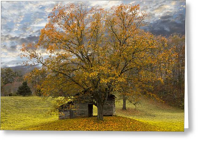 The Old Oak Tree Greeting Card by Debra and Dave Vanderlaan