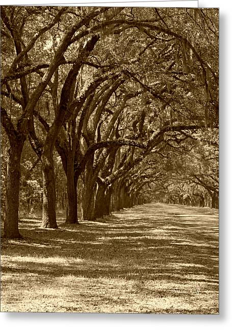 The Old South Series In Sepia Greeting Card by Suzanne Gaff