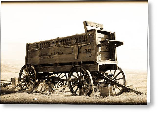 Horse And Buggy Greeting Cards - The Old Wagon Greeting Card by Steve McKinzie