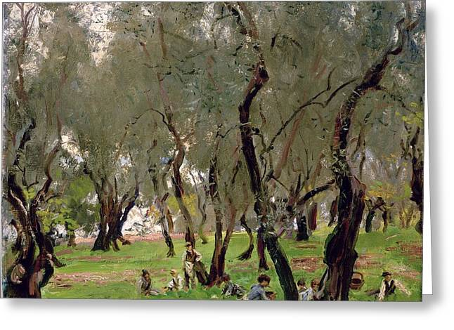 Picker Greeting Cards - The Olive Grove Greeting Card by John Singer Sargeant