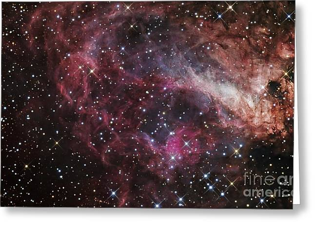 The Omega Nebula Greeting Card by R Jay GaBany