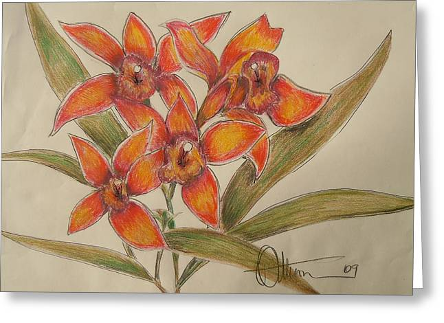 Quartet Drawings Greeting Cards - The Orange Singers Greeting Card by Dan  Whittemore