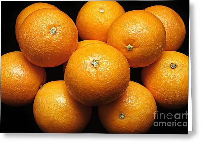 Orange Greeting Cards - The Oranges Greeting Card by Andee Design