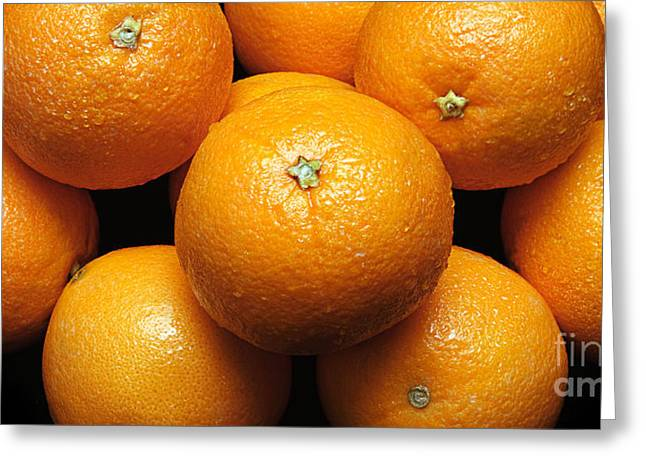 Orange Greeting Cards - The Oranges Panorama Greeting Card by Andee Design