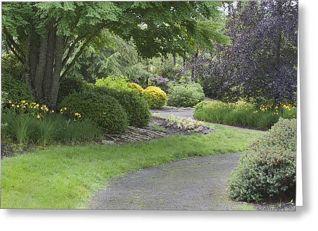 State Parks In Oregon Greeting Cards - The Oregon Gardens Is A Botanic Garden Greeting Card by Douglas Orton