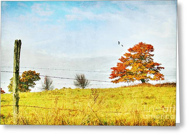 October Framed Greeting Cards - The Other Side Greeting Card by Darren Fisher