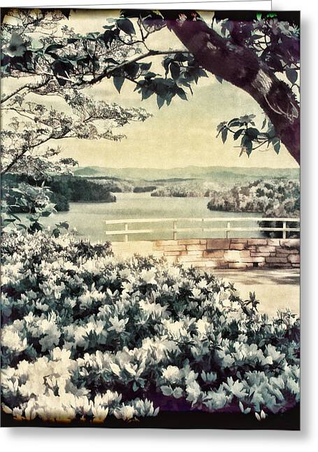 Dogwood Lake Greeting Cards - The Overlook Greeting Card by Darren Fisher