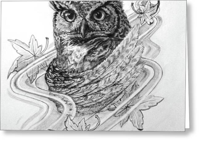 The Owl Greeting Card by Thomas Hoyle