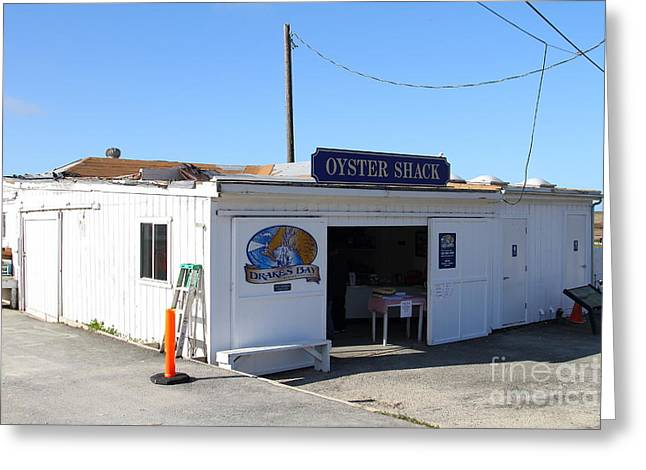Marin County Greeting Cards - The Oyster Shack at Drakes Bay Oyster Company in Point Reyes California . 7D9833 Greeting Card by Wingsdomain Art and Photography