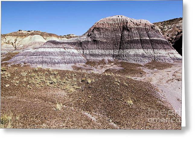 Petrified Forest National Park Greeting Cards - The Painted Valley Greeting Card by Adam Jewell