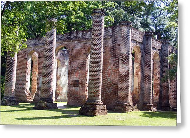18th Century Greeting Cards - The Palmetto Phoenix Old Sheldon Church Ruins Greeting Card by Elena Tudor