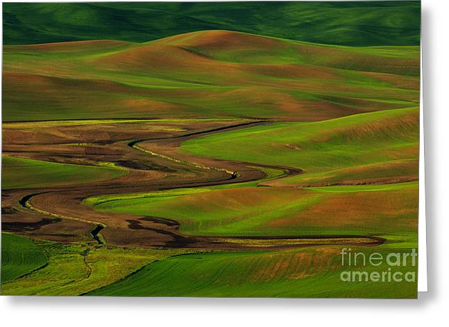 © Beve Brown-clark Greeting Cards - The Palouse Greeting Card by Reflective Moments  Photography and Digital Art Images
