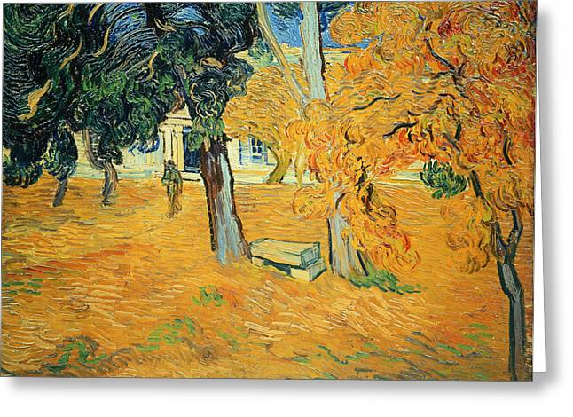 Saint-remy De Provence Greeting Cards - The Park at Saint Pauls Hospital Saint Remy Greeting Card by Vincent van Gogh