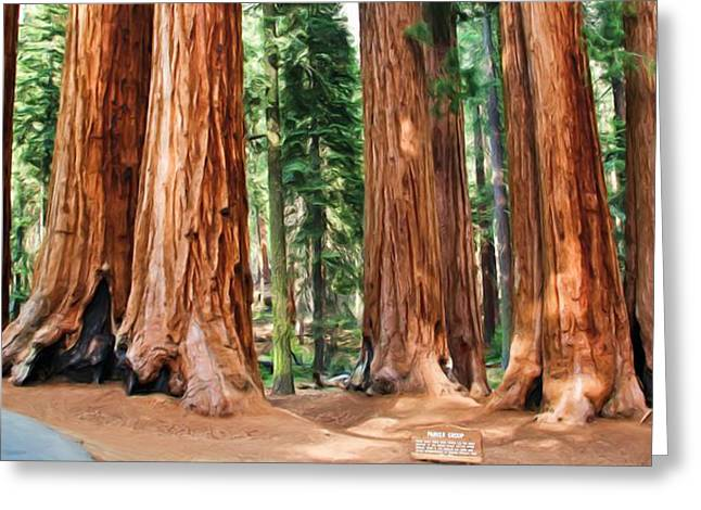 Sequoia National Park Greeting Cards - The Parker Group Greeting Card by Heidi Smith