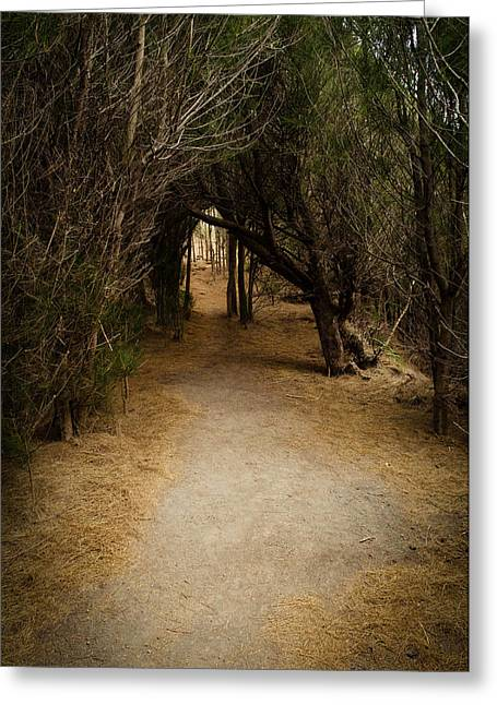 The Path Greeting Card by Robert Martin