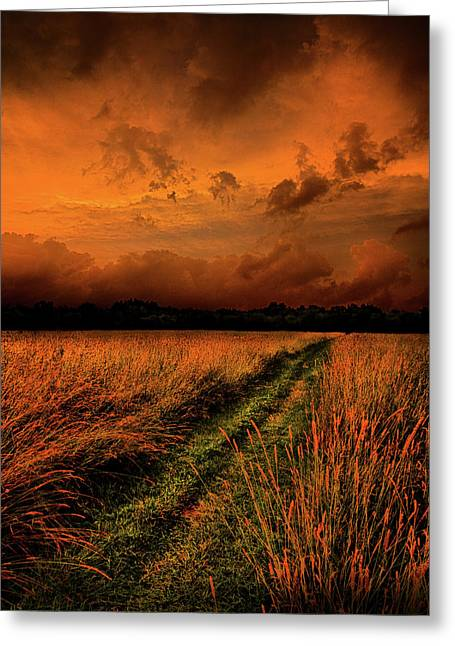 Twilight Greeting Cards - The Path to Reclusivity Greeting Card by Phil Koch