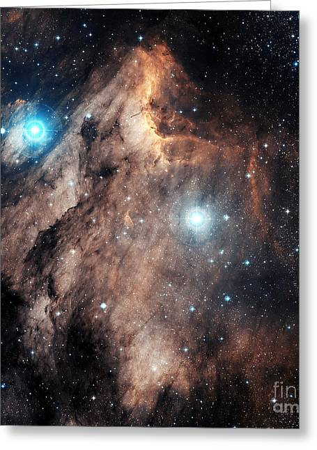 Interstellar Space Greeting Cards - The Pelican Nebula Greeting Card by Charles Shahar