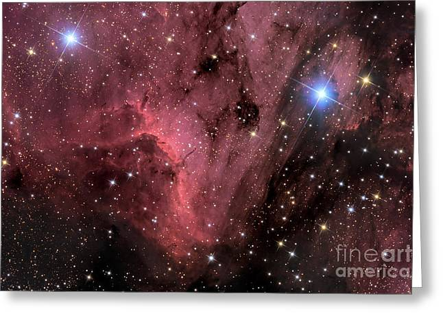 Interstellar Space Greeting Cards - The Pelican Nebula Greeting Card by Roth Ritter