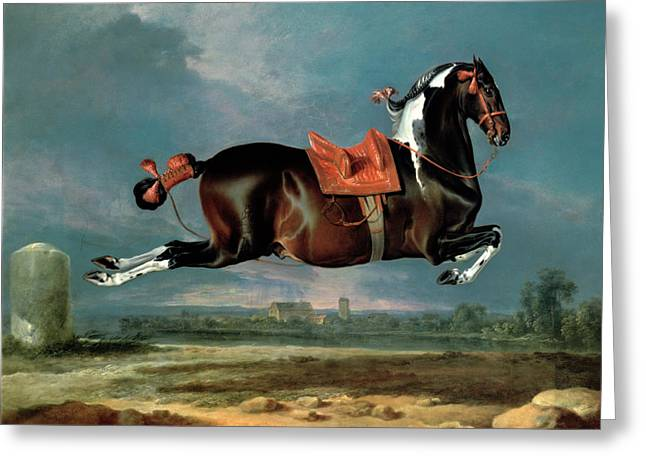 Hamilton Greeting Cards - The Piebald Horse Greeting Card by Johann Georg Hamilton