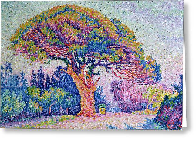 Pointillist Greeting Cards - The Pine Tree at Saint Tropez Greeting Card by Paul Signac