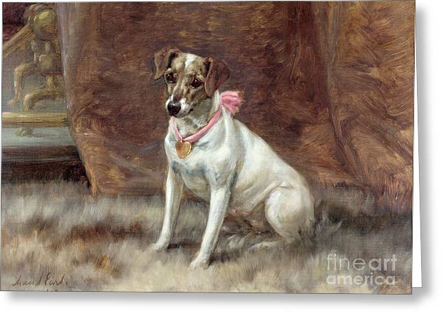 Jack Russell Terrier Greeting Cards - The Pink Bow Greeting Card by Maud Earl