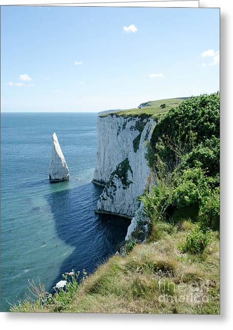 Photos Greeting Cards - THE PINNACLE stack of white chalk from the cliffs of the Isle of Purbeck Dorset England UK Greeting Card by Andy Smy