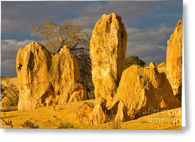 Travel Photographs Greeting Cards - The Pinnacles Nambung National Park Australia Greeting Card by Louise Heusinkveld