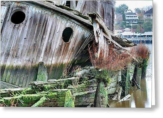 Cape Fear River Greeting Cards - The Planter Greeting Card by JC Findley