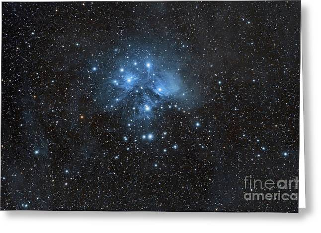 Starforming Greeting Cards - The Pleiades, Also Known As The Seven Greeting Card by John Davis