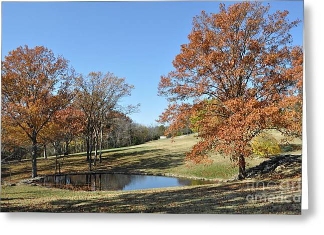 Best Sellers -  - Cheekwood Greeting Cards - The Pond Greeting Card by Denise Ellis