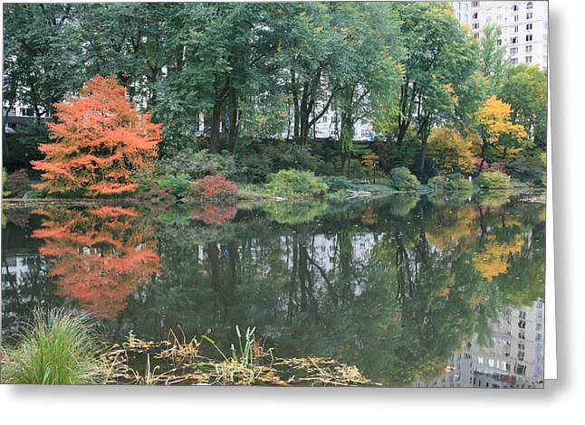 Pond In Park Greeting Cards - The Pond in Central Park in Fall Greeting Card by Christopher Kirby