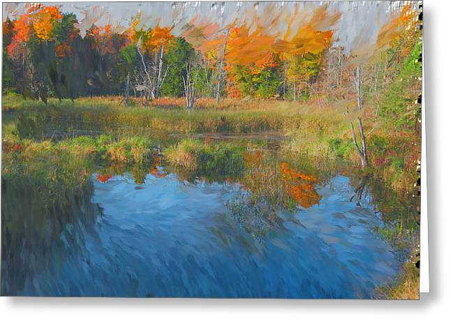 The Pond Next Door Greeting Card by Mario Carini