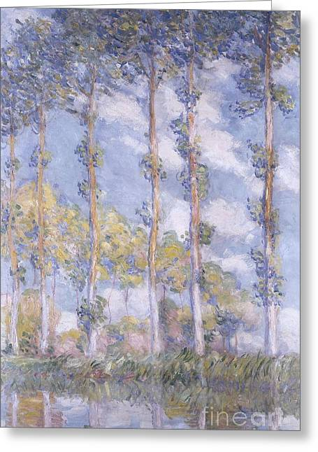 Tree Leaf On Water Paintings Greeting Cards - The Poplars Greeting Card by Claude Monet