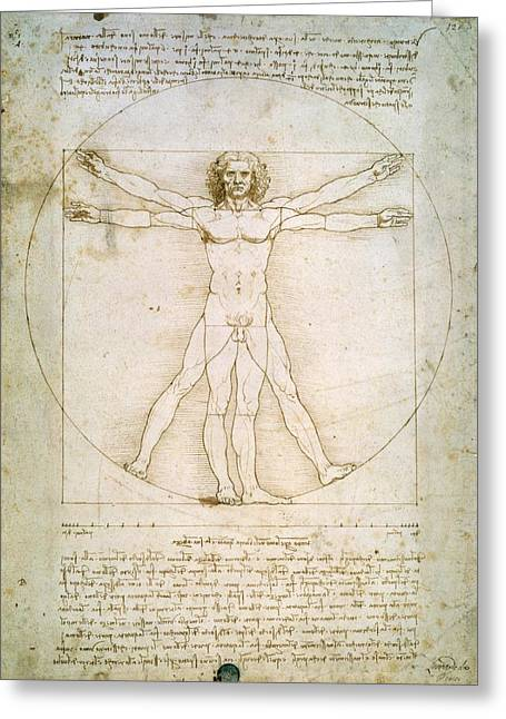 Proportions Greeting Cards - The Proportions of the Human Figure  Greeting Card by Leonardo Da Vinci