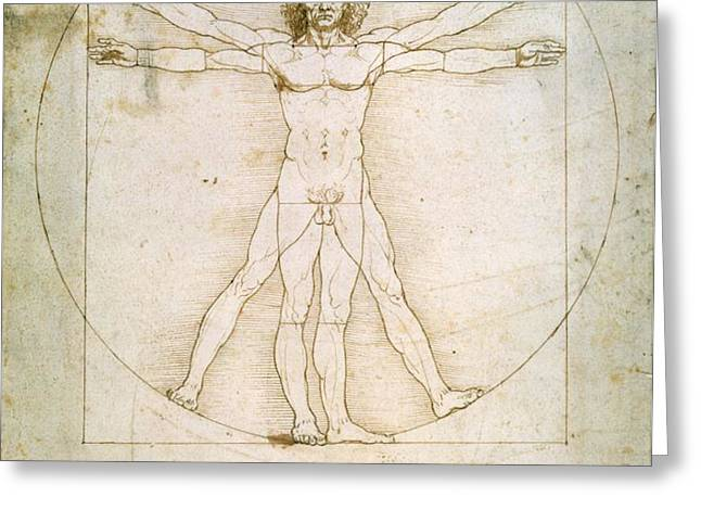The Proportions of the Human Figure  Greeting Card by Leonardo Da Vinci