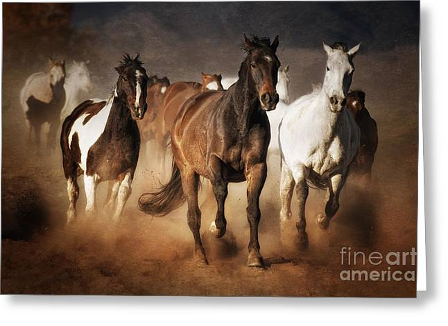 Horse Run Greeting Cards - The Race Greeting Card by Heather Swan