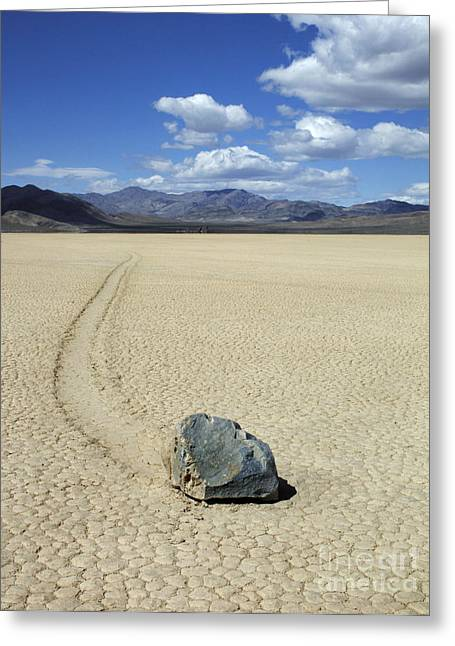 Mountains Of Sand Greeting Cards - The Racetrack 11 Greeting Card by Bob Christopher